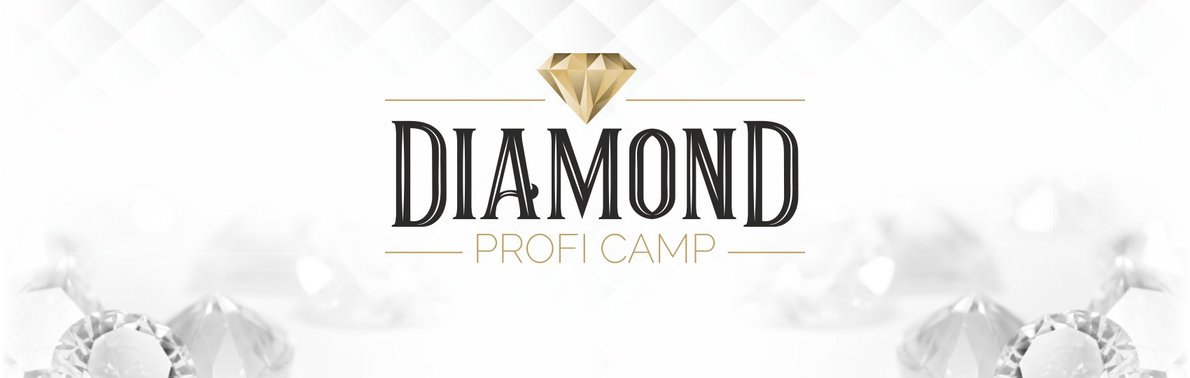 Diamond Profi Camp